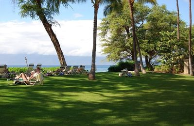 Enjoy the ocean from the coolness of the lawn