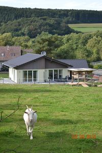 """Photo for Exclusive bungalow """"Ooser Tälchen"""", fantastic location, fenced, built in 2014"""