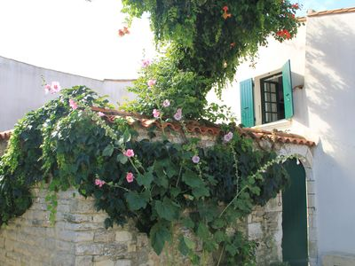 Photo for La Flotte, 150 m from the port, charming house with courtyard access