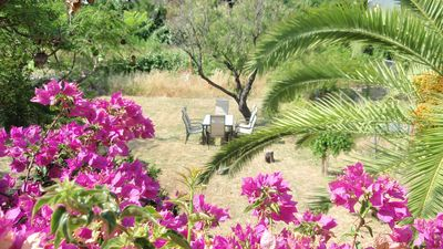 Photo for Fully equiped 2 bed apartment costa blanca (further 1 bed apartment available)
