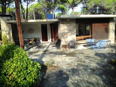 Photo for House by the sea in a light pine forest