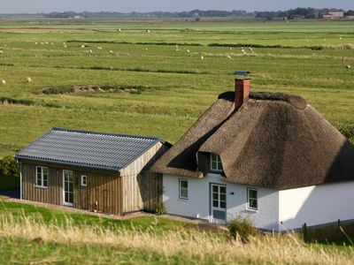 Photo for A dreamlike thatched roof house by the sea near St. Peter-Ording