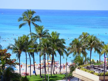 The Seashore, Waikiki, HI, USA