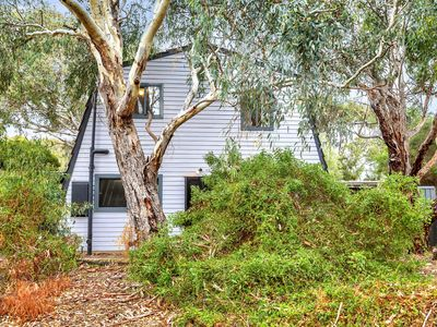 Photo for Pink Gums - Serene Scrub Setting just 3 Mins to the Beach | Pets Negotiable