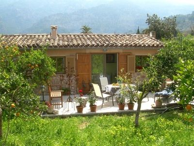 Photo for Good value apartment in the middle of an orange grove in Soller
