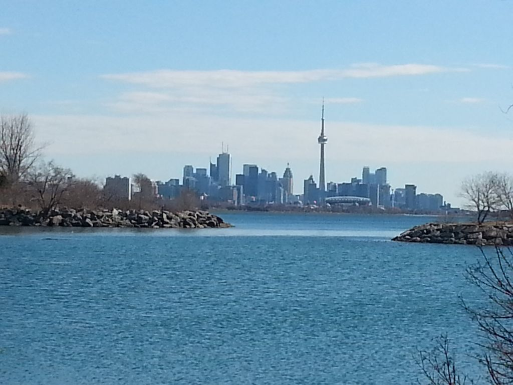 Modern Condo Minutes to CN Tower in Lake Shore Blvd, Humber Bay Park