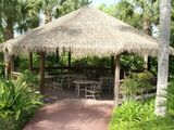 Bahama Bay Caribbean Island themed resort of near to Disney