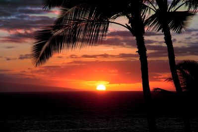 Amazing nightly sunset from your private  front lanai/patio