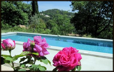 Photo for Rental villa full foot individual raised olive trees with private swimming pool