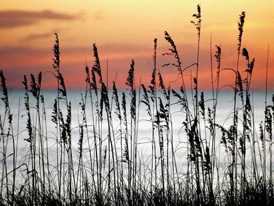 Photo for Experience The Remarkable Difference of Navarre Beach