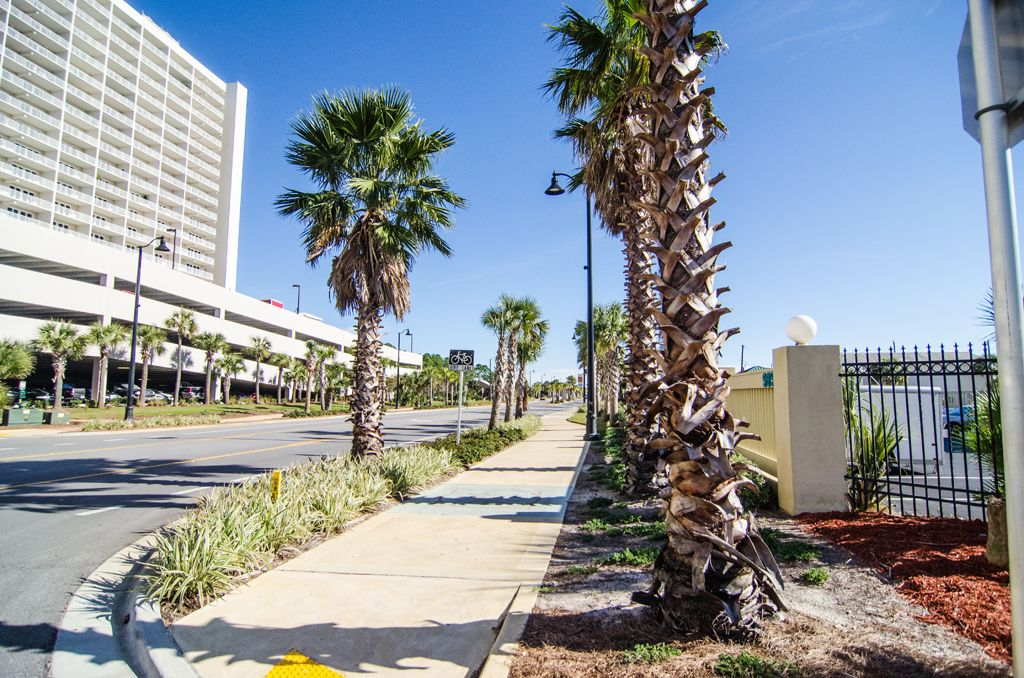 Beachfront Bargain Near Iconic Restaurants, Clubs and Attractions and FREE Bonuses!
