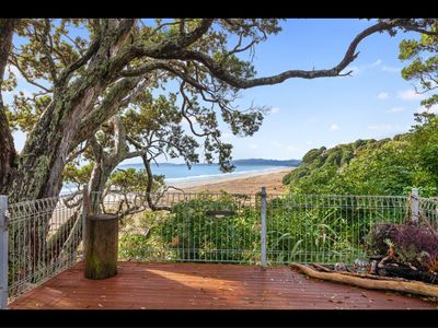 Photo for BEACHFRONT    FOREST