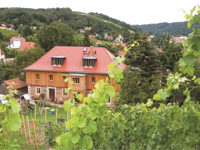 Photo for Green gem - winery with its own vineyard in Meissen