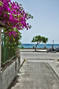 Photo for The house by the sea in Roccalumera