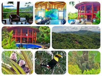 Photo for Pure jungle seclusion, 15 minutes from the beach