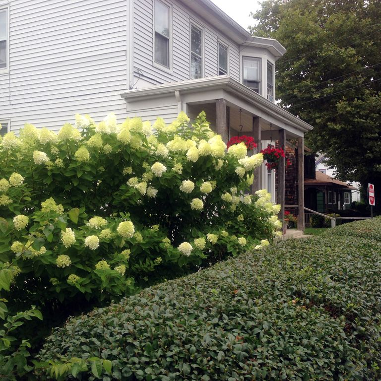 Cape May Apt For 2~Great Location~Affordable~Historic