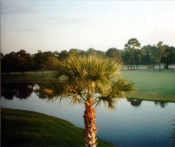 Photo for Beautiful Meadows Condominium Picturesque Water and Golf View