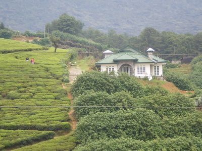 Photo for Newly Built-Terrace Holiday Bungalow- 24 hour Cook-surrounded by tea estates