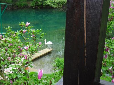 """Photo for Holiday house """" Sonja"""" on the river Mrežnica for relaxing or active holidays"""