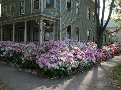 Photo for Wonderful downtown Home! Sleeps 13!!  Walk to Everything! Free WIFI, sheets and towels included. BOOK TODAY!