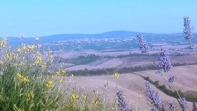 Photo for Welcome to the Crete Senesi, a stone's throw from Siena immersed in nature
