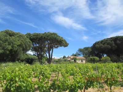 Photo for 2BR Country House / Chateau Vacation Rental in Ramatuelle, Provence-Alpes-Côte-D'Azur