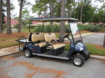 4 or 6 Person Cart for adventures throughout Sandestin and the market area