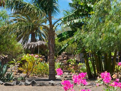 Photo for Eco Finca Natura, Private 1 Acre Tropical Garden, Pool, Near Arrieta