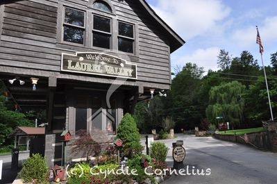 Welcome to the mountain community of Laurel Valley, Townsend, TN.