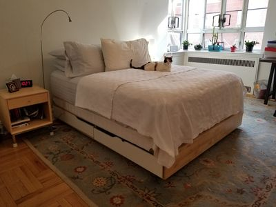 Photo for bright comfortable one bedroom + study in lovely park slope brooklyn nabe