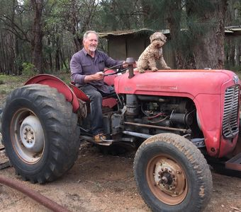 Farmer Ray Charlie and Noddy the tractor.