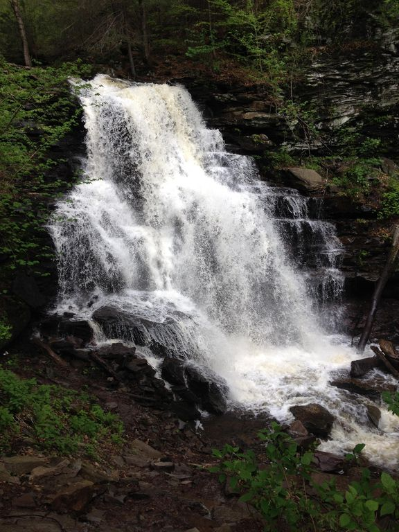 1 Mile From Ricketts Glen Falls!