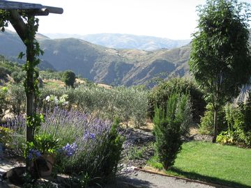 Rural Farmhouse situated with sumptuous garden and magnificent panoramic views - El Lujar (1 bedroom, sleeps 2)