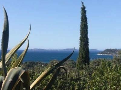 Photo for Family Villa Provençale, jewel Of Greenery, Sea View