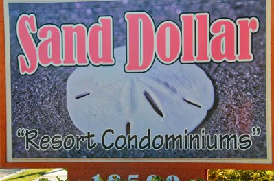 Sand Dollar Resort right on the Gulf Of Mexico