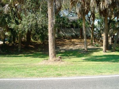 Privacy and Seclusion - Marsh View  150 Yards from Front Beach