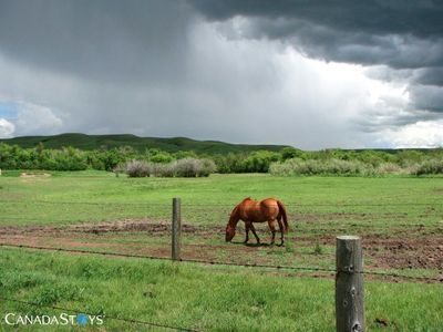 Photo for Welcome To The Cottage Of Content - Maple Creek