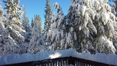 View from rear deck after a big snow.