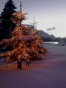 Photo for Dreaming Of A White Christmas