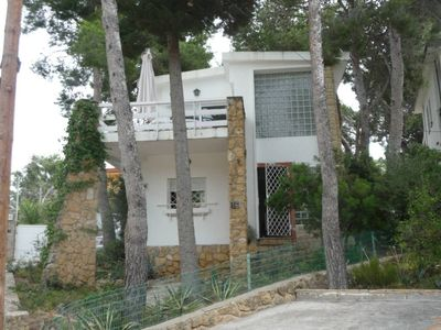 Photo for Detached villa in a pine forest 200m from a beautiful beach
