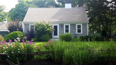 Photo for Spacious Cottage with English-Style Garden in Osterville Village, Cape Cod