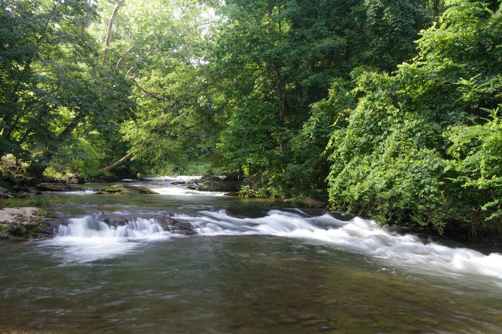 Fishing on property waterfall screened vrbo for Fishing cabins in tennessee