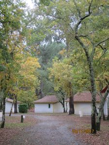 Photo for CHARMING SMALL FISHING HOUSE 400m FROM THE BEACH AND THE ARCACHON BASIN