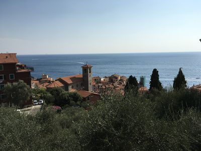 Photo for Seagull sea view on the fishing village of Tellaro