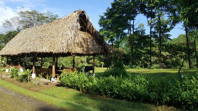 Photo for Quiet guesthouse in a jungle farm, surrounded by rivers, mountains and forest
