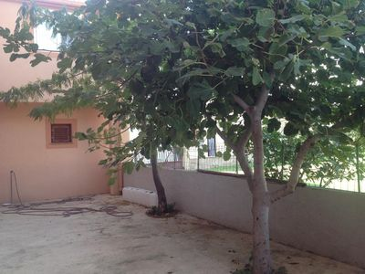 Photo for One bedroom apartment with balcony Pag