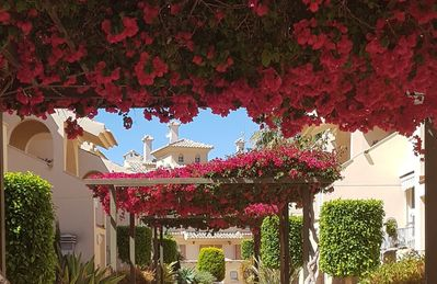 Photo for LOU'S PLACE -Albatros - Close to beach & golf 2 bed  G/floor - air con/heat-Wifi