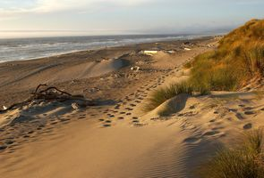 Photo for 3BR House Vacation Rental in Bandon, Oregon