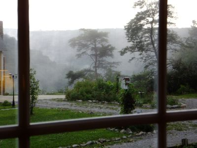 View out the dining room window on a rainy day.
