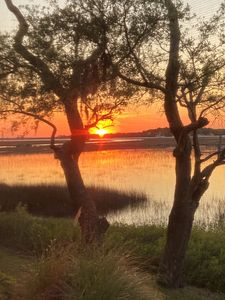 Photo for Breathtaking Salt Marsh Views & Sunsets & Kayaking with Dolphins